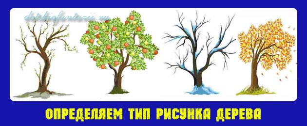 тип-рисунка-дерева