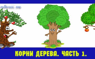 корни-дерева-в-ДДЧ