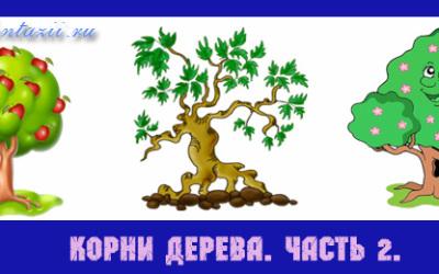корни-дерева-2