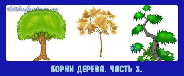 корни-дерева-ДДЧ